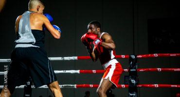 Boxe adulte ou Jujitsu Brésilien